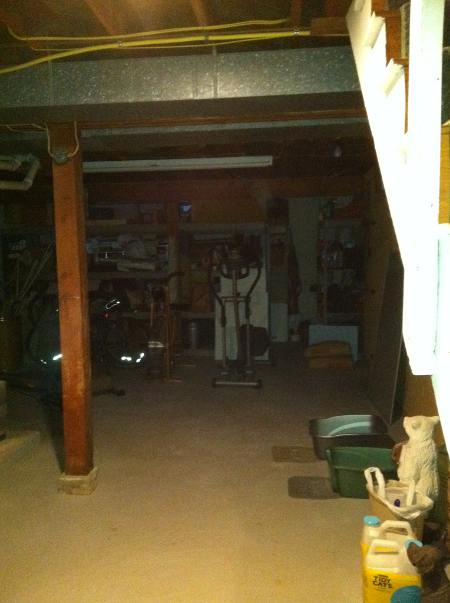 havoner basement ghost