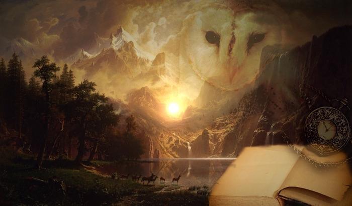 dream world astral